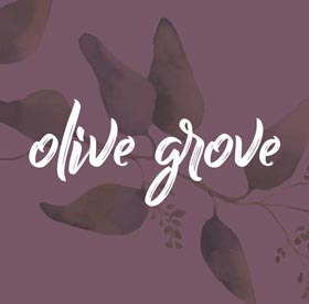 OliveGrove_Logo